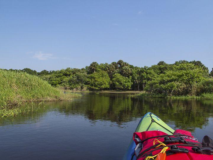 Myakka River and Kayak - Sally Weigand Images