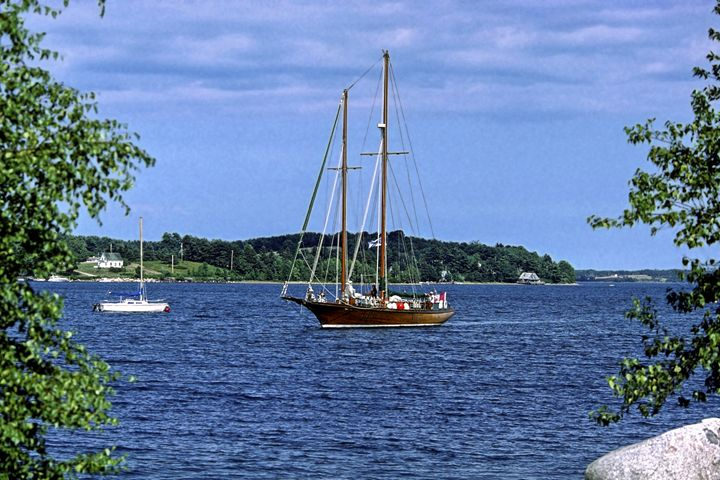 Mahone Bay Harbor Scene - Sally Weigand Images