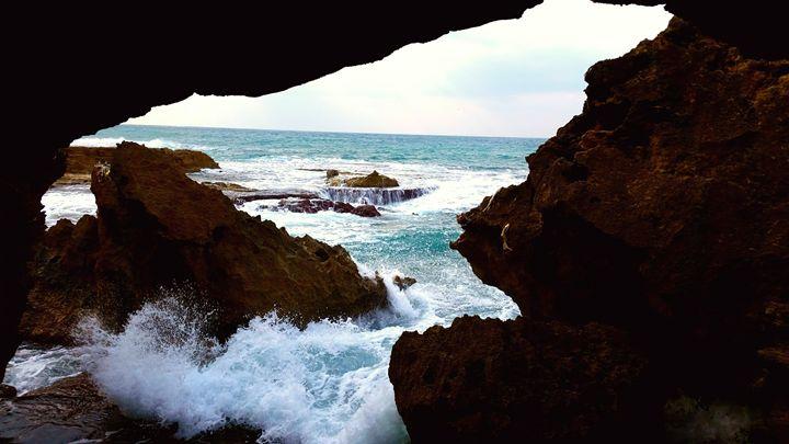 Inside The Secret Cove - Jonathan M. Schwartzman