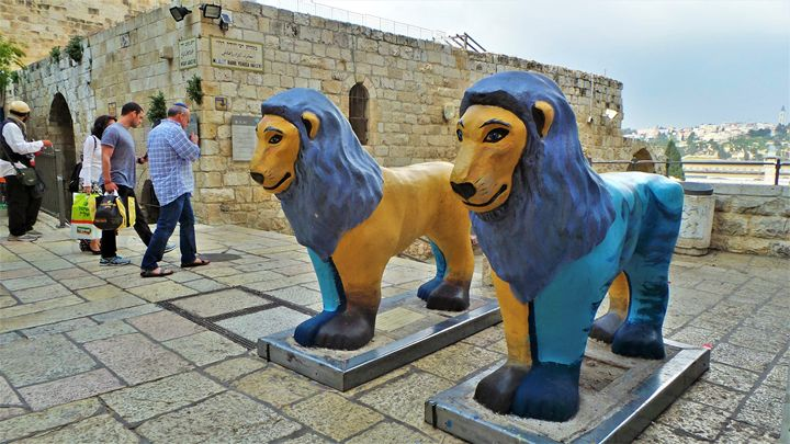 Exodus Lions - Jonathan M. Schwartzman