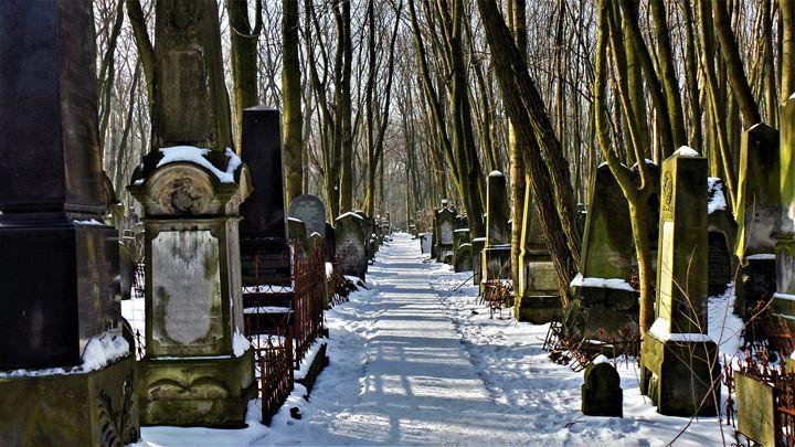 Lane Of Memories - Jonathan M. Schwartzman