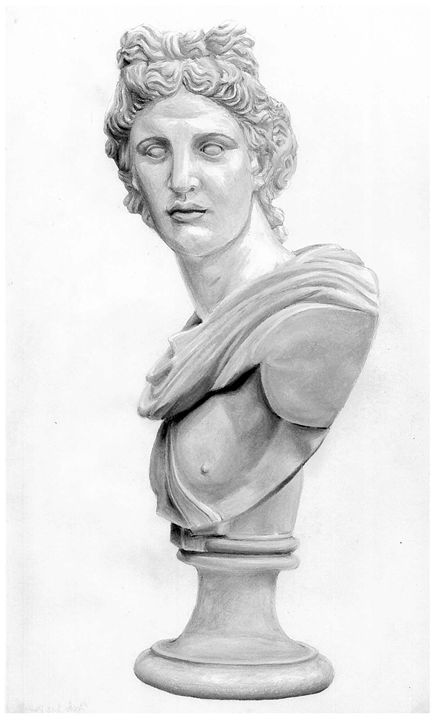 Apollo Bust Drawing - Jake's Drawings