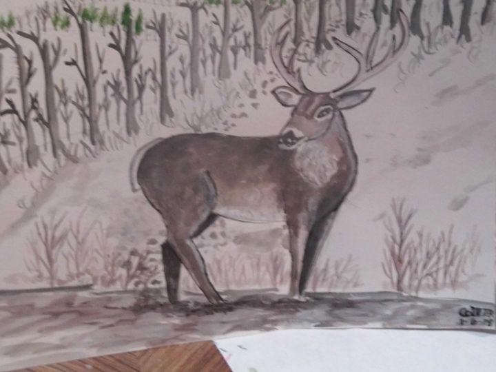 Whitetail deer - Carl Morgan