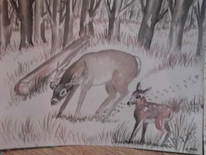 Doe and fawn in forest
