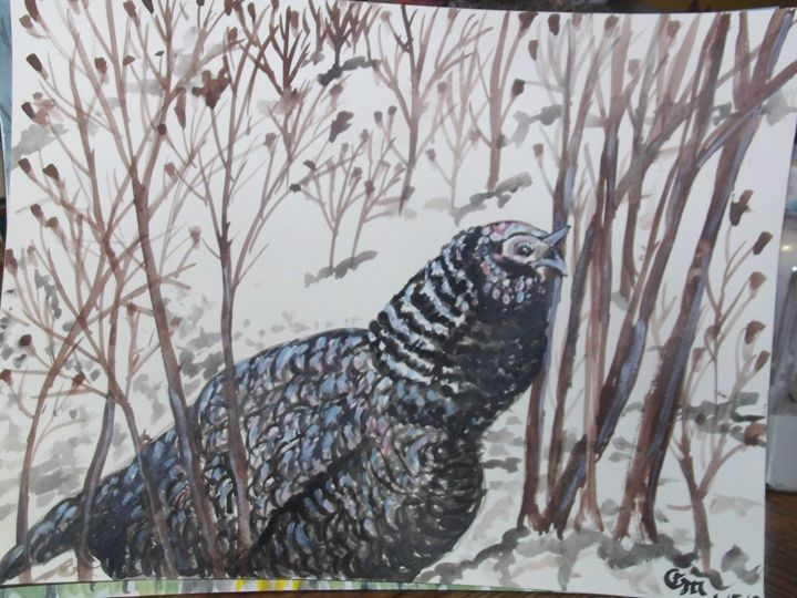Turkey in snow at George.s place - Carl Morgan