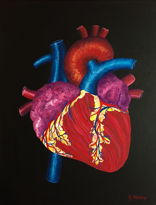 Human Heart - Art Attack