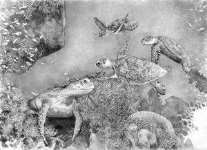 Turtles 21x30cm