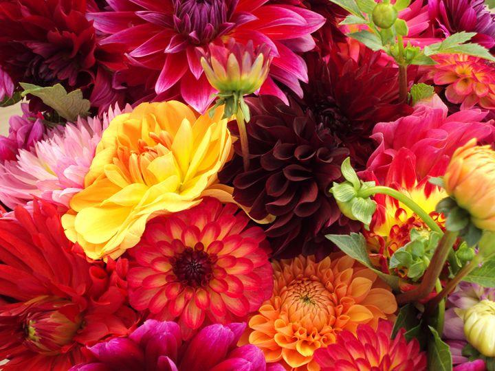Kenya Flowers - Normads Art Studio