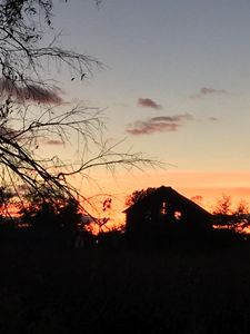 Sunset on the Farm 1