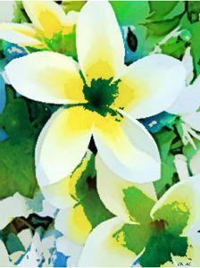 Cornus Flower