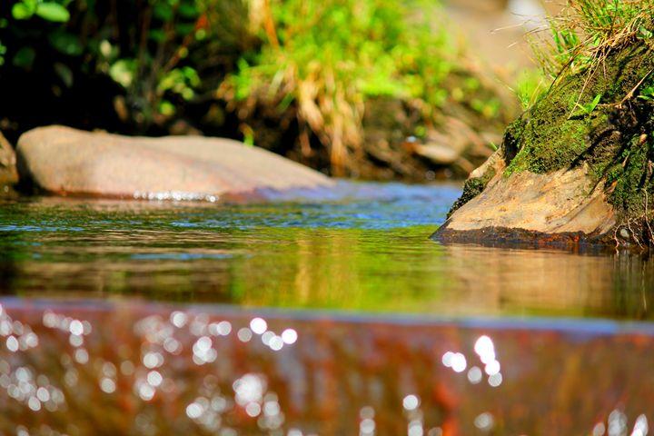 Waters Edge - Falconz Eye Imagery