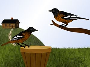 Pair of Baltimore Orioles and Cabin - Art by Lorene