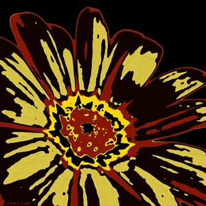 Black eye Susan - FORTUNA ART