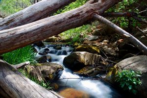 Horton Creek