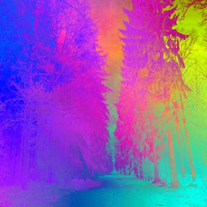 Psychedelic Forest 1