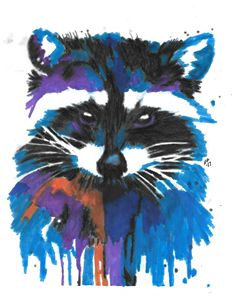 Colorful 'Coon