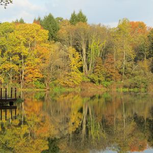 october lake reflection