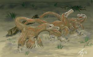 Velociraptor - Shifflett Studios