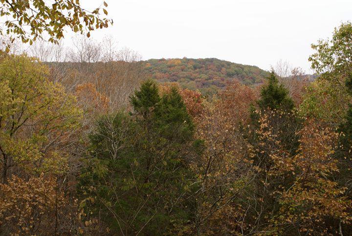 Autumn Hills - Gregory Patrick Lafferty
