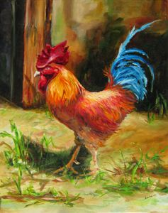 Blue Tailed Rooster