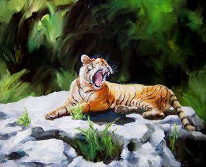 Tawny Tiger