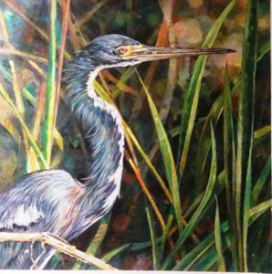 THE TRY COLORED HERON