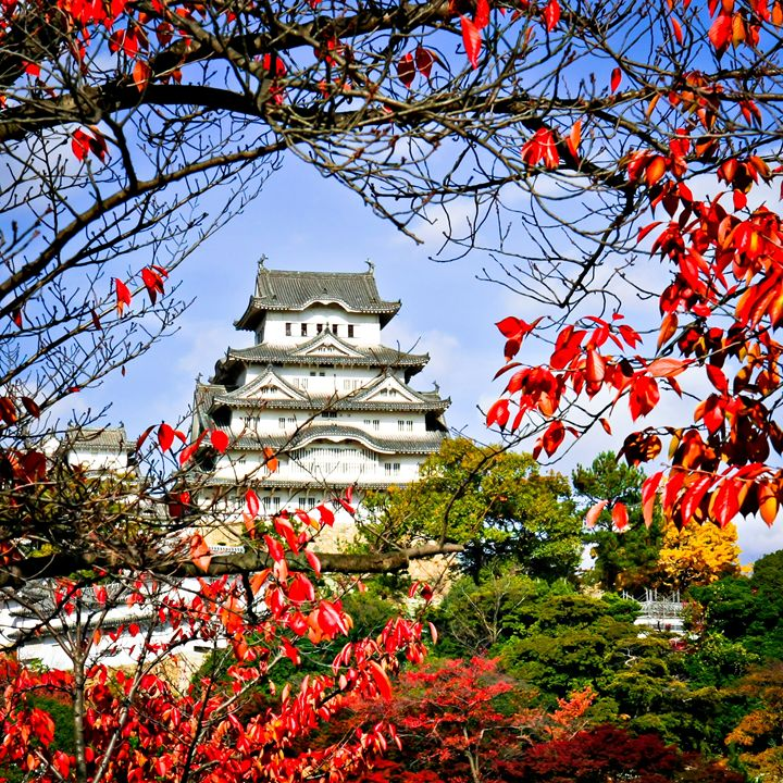 Himeji Castle, Japan - Neale Cousland