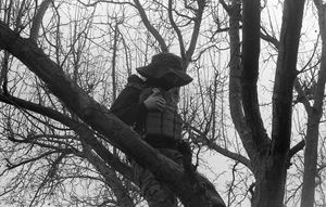 Man in the Tree pt. 2