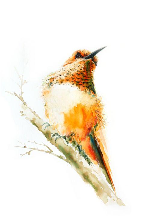 humming bird - Oriental Art Studio
