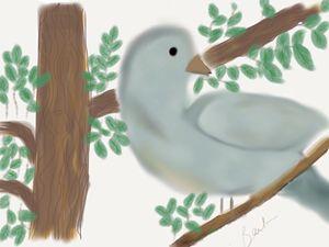 Looking Bird in Tree