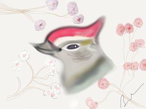 Woodpecker in Cherry Blossoms