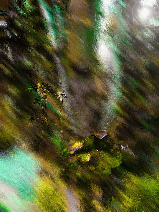 birch - Elizabeth Oliver muddled photography