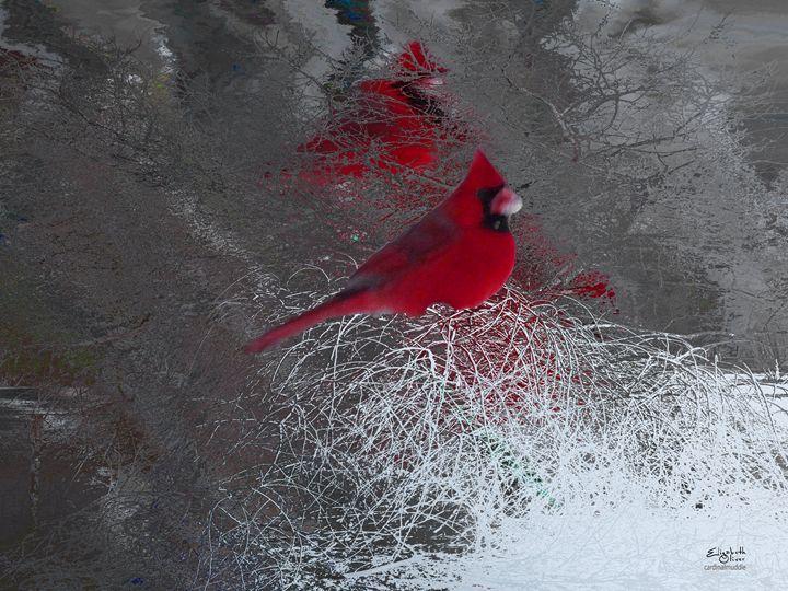 cardinalmuddle - Elizabeth Oliver muddled photography