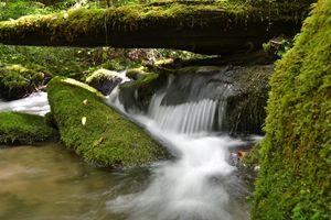 Great Smokey Mountains Waterfall