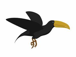 Toucan - Kathy Gold Art