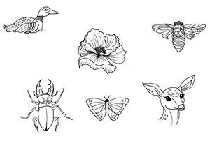 Nature Designs Tattoo Flash