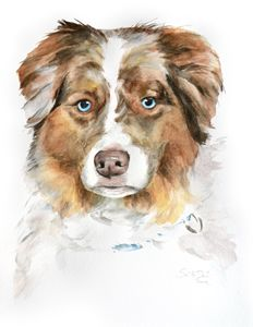 Aussie - Watercolors by Susi