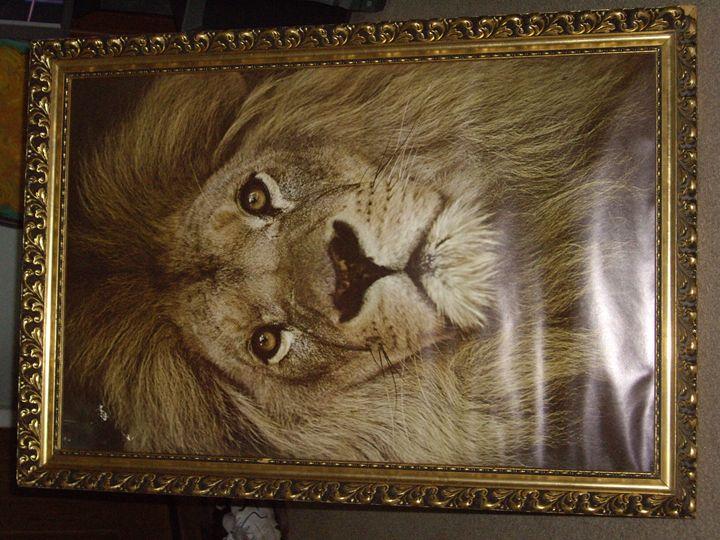 The Lion - Frank&Ime/Soul
