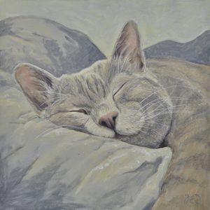 Lazy Days Sleeping Cat 2