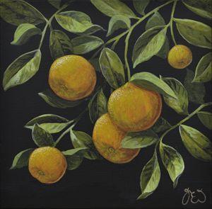 Leafy hanging Oranges