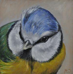BRITISH GARDEN BIRD BLUE TIT - James Ineson
