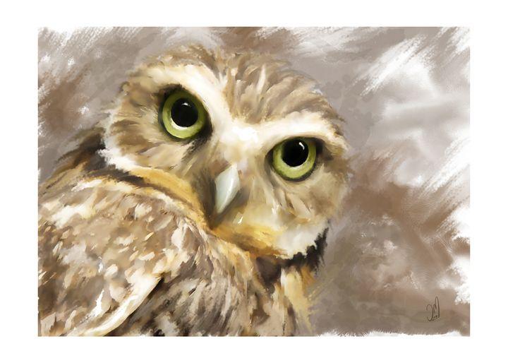 Owl - Jovan watercolors