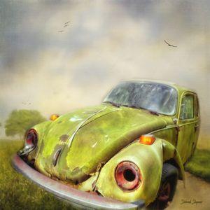 Forgotten Bug