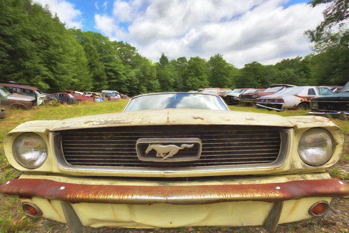 Ford Mustang - Deborah Shupenis Photography
