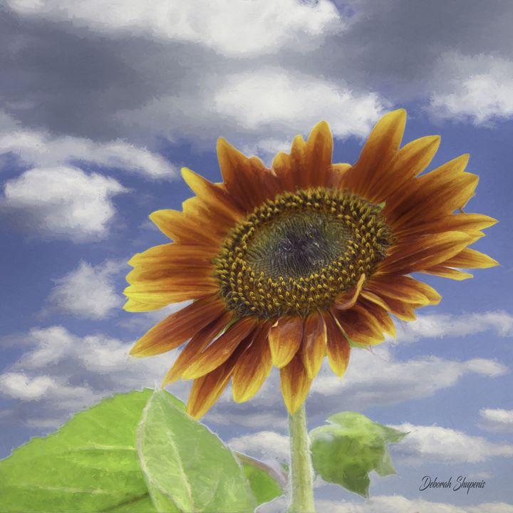 Autumn Sunflower - Deborah Shupenis Photography