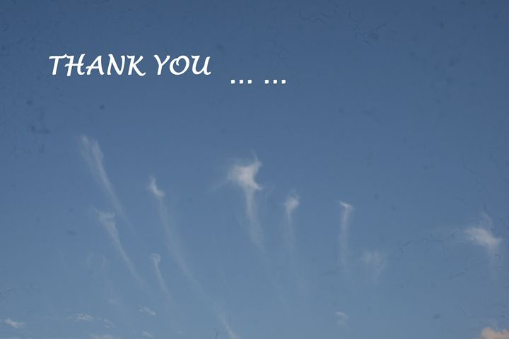 Thank you in sky - Cricket photo