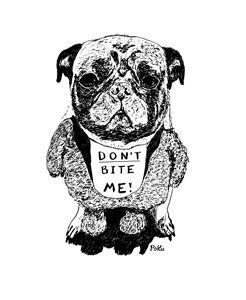 Don't Bite Me (pug)