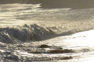 Coastal textures - Margaret LN Brooks
