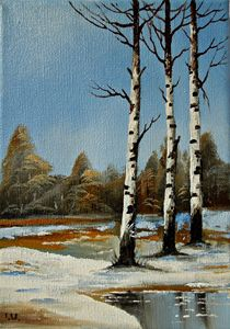 "Silver Birch Trees in Spring"""