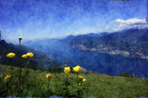 Buttercups on top of a hill - CibArt
